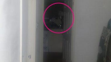 Ghost Captured in Camera! घर में अजीब आवाजें सुनने के बाद शख्स ने ली फोटोज, उसके बाद जो हुआ...देखें तस्वीरें