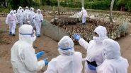 महाराष्ट्र में बर्ड फ्लू का संकट, एक दिन में 376 पक्षियों की मौत