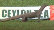 SL vs ENG: श्रीलंका ने गॉल में लगाया 'एक्स्ट्रा फील्डर', देखें ICC का माहौल खुशनुमा बना देने वाला ट्वीट