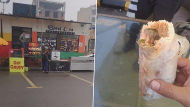 Shocking! बच्चे के सैंडविच में मरे हुए चूहे को देख फैमिली वालों के उड़े होश, हैरान करने वाली घटना का VIDEO हुआ वायरल