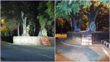 Haunted Story of Delhi: द्वारका के इस पेड़ में बसती है एक महिला की आत्मा! जानिए इसके पीछे की डरावनी कहानी