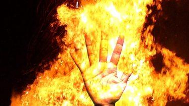 बिहार में एक ही परिवार के 3 लोगों की झुलसने से मौत, कई घर जलकर राख
