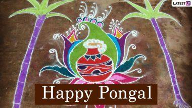 New Pongal Rangoli Designs 2021 & Muggulu Patterns: फसलों के त्योहार पोंगल पर बनाएं डॉट और पॉट वाली खूबसूरत रंगोली, देखें मनमोहक डिजाइन्स
