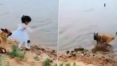 दोस्ती हो तो ऐसी! पालतू डॉगी ने छोटी बच्ची को नदी में गिरने से ऐसे बचाया, Viral Video देख आप भी करेंगे इस जानवर की सराहना