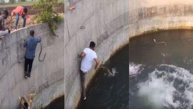 पुरुषों के एक ग्रूप ने कुएं में डूबते हुए सांप की ऐसे बचाई जान, रेस्क्यू वीडियो हुआ वायरल (Watch Viral Video)
