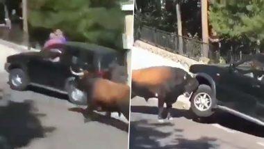 Viral Video: सांड को आया गुस्सा तो उसने सड़क किनारे खड़ी कार का किया ये हाल, वीडियो देख हो जाएंगे हैरान