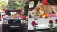 Maharashtra: 11 साल की सेवा के बाद नासिक सिटी पुलिस बल से रिटायर हुआ स्निफर डॉग, देखें फेयरवेल का VIDEO