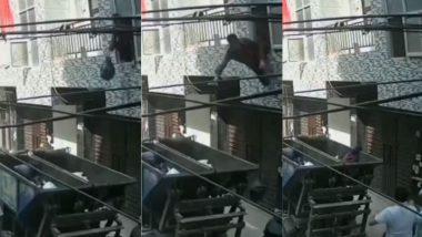 Viral Video: खिड़की से कचरा फेंकते समय खुद ही गाड़ी में गिर गया शख्स, वीडियो देख हंसी से लोटपोट हो जाएंगे आप