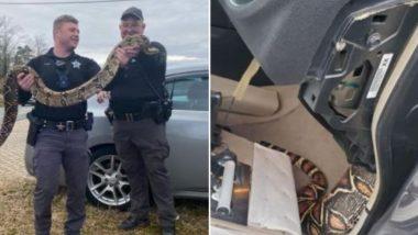 Viral Photos: अपने मालिक की कार के डैशबोर्ड में फंसा विशाल सांप, ऐसे किया गया उसे रेस्क्यू