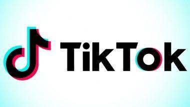 TikTok ने इंस्टाग्राम पर Thank You नोट के साथ अपनी भारत की टीम को कहा अलविदा, देश में फिर से लॉन्च होने की जताई उम्मीद