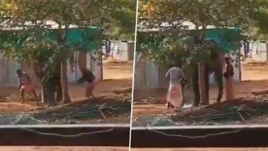Viral Video: महावतों ने हाथी को बेरहमी से पीटा, दर्ज से तड़पते जानवर का वीडियो वायरल