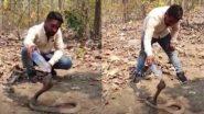 प्यास लगी तो किंग कोबरा को आया गुस्सा, जंगल में छोड़ने से पहले स्नेक रेस्क्यू टीम मे बोतल से ऐसे पिलाया पानी