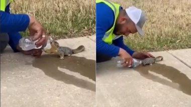 नन्ही गिलहरी को लगी थी जोरों से प्यास, शख्स ने बोतल से पिलाया पानी तो ली राहत की सांस (Watch Viral Video)