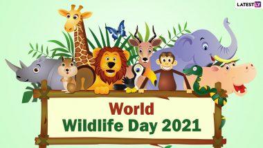 World Wildlife Day 2021: धरती पर वनस्पतियों और जीवों के प्रति जागरूकता बढ़ाने का दिन है विश्व वन्यजीव दिवस, जानें इतिहास और महत्व