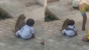 Viral Video: छोटे बच्चे से लिपट कर बीच सड़क पर प्यार जताने लगा बंदर, मनमोहक वीडियो हुआ वायरल