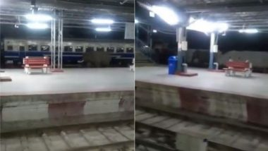 Viral Video: जब अचानक रेलवे स्टेशन पर आ पहुंचा हाथी और पटरी पर लगाने लगा दौड़, वीडियो में देखें आगे क्या हुआ?