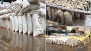Haryana: बारिश के कारण अंबाला मंडी में रखे गए अनाज भीगे
