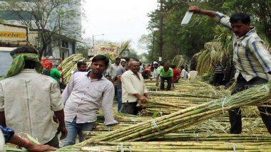 Uttar Pradesh: यूपी सरकार का दावा, 4 साल में 45.44 लाख गन्ना किसानों को 130,000 करोड़ रुपये का भुगतान
