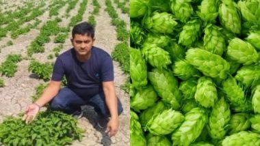 Bihar: झूठा निकला एक लाख रुपए किलो वाली Hop-Shoots सब्जी की खेती का दावा, जांच में हुआ चौंकाने वाला खुलासा
