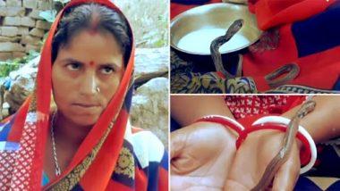 Woman Gave Birth to Snakes? बिहार की महिला का दावा, 3 सांपों के बच्चों को दिया जन्म, देखें हैरान कर देने वाला वीडियो