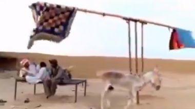 Desi Jugaad Video: इस शख्स ने गर्मी से बचने के लिए किया देसी जुगाड़, वीडियो देख आप भी कहेंगे वाह गुरु!