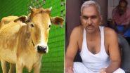 BJP MLA सुरेंद्र सिंह का अजब-गजब नुस्खा, गोमूत्र और हल्दी के सेवन से नहीं होगा कोरोना, देखें वीडियो