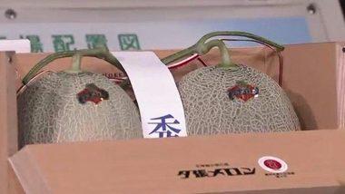 Japan: Hokkaido में लगभग $ 25,000 में नीलाम हुए दो प्रतिष्ठित युबारी खरबूजे