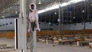 दिल्ली: आईटीबीपी ने बंदरों के खतरे से निपटने के लिए सरदार पटेल कोविड केयर सेंटर में लगाए बबूनों के कटआउट