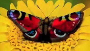 फूल पर तितली बैठी है या महिला? इस अद्भुत कला को देखकर चकरा जाएगा आपका सिर (Watch Viral Video)