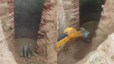 झारखंड: गांव के खुले कुएं में गलती से गिरा हाथी का बच्चा, वन अधिकारियों ने बचाई जान (See Viral Pics)