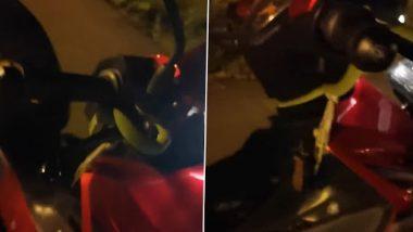 Snake On Bike Handle: चलती स्कूटी के हैंडल पर अचानक आया सांप, देखें कैसे बचा चालक