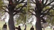 Viral Video: पुलिस से बचने के लिए पेड़ पर चढ़ गया चोर, उसके बाद सिपाही ने किया कुछ ऐसा, देखें वीडियो