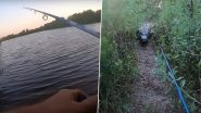 Viral Video: मछली पकड़ने गया था शख्स, पीछे पड़ गया विशाल एलीगेटर, उसके बाद जो हुआ...देखें वीडियो