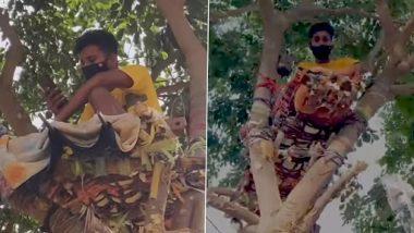Telangana: आइसोलेशन के लिए जगह न होने के कारण कोविड पॉजिटिव छात्र ने पेड़ पर बिताए 11 दिन