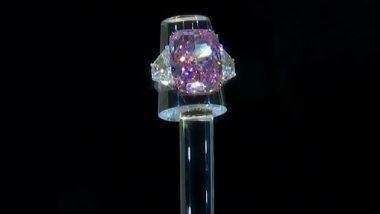 Largest Ever Purple-Pink Diamond: अब तक का सबसे बड़ा पर्पल पिंक डायमंड 'द सकुरा' 213 करोड़ में हुआ नीलाम, हीरे की चमक देख घूम जाएगा दिमाग