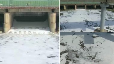 Delhi: कालिंदी कुंज में यमुना नदी में दिखा जहरीला झाग