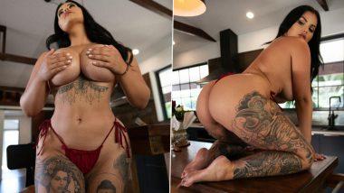 XXX स्टार Renee Gracie की Semi Nude Photos देखकर पोर्नस्टार्स भी रह जाएंगे दंग, बला की खूबसूरती हैं ये मॉडल