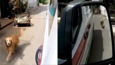 इस्तांबुल: बीमार मालिक को ले जा रही एंबुलेंस के पीछे दौड़ने लगा कुत्ता, सबके दिलों को जीत रहा है यह वीडियो (Watch Viral Video)