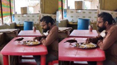 Viral Video: नन्हे से पक्षी के साथ शख्स ने एक ही थाली में खाया खाना, बार-बार देखा जा रहा है दिल को छू लेने वाला यह वीडियो