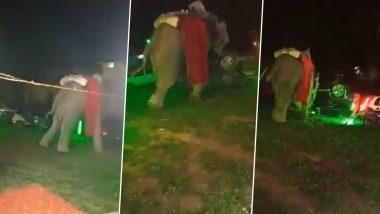 Uttar Pradesh: प्रयागराज में शादी समारोह में हाथी ने मचाया उत्पात, जान बचाने के लिए वहां से भागे दूल्हा और बाराती (Watch Video)