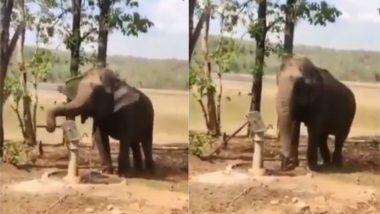 सूंड से हैंडपंप चलाकर हाथी ने बुझाई अपनी प्यास, पानी पीने के इस अद्भुत जुगाड़ का वीडियो हुआ वायरल (Watch Viral Video)