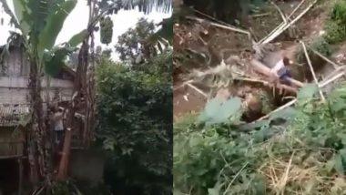जिस पेड़ पर चढ़ा था शख्स उसी को लगा काटने, अपने इस कारनामे से सीधे जा गिरा नाले में… (Watch Viral Video)
