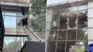Delhi: सफदरजंग एयरपोर्ट पर IT बिल्डिंग में लगी आग, मौके पर दमकल की 6 गाड़ियां मौजूद