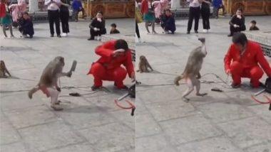 Viral Video: जब बंदर ने मदारी पर कर दिया चाकू से हमला, फिर जो हुआ… वायरल वीडियो देख आप भी हो जाएंगे हैरान