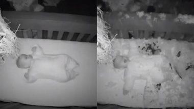 सोते समय 5 महीने के मासूम के बेड के पास अचानक धड़ाम से गिरा ओक का पेड़, बेबी मॉनिटर में कैद हुआ डरावना मंजर (Watch Viral Video)