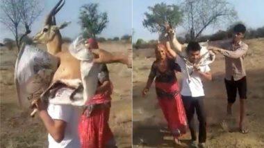 राजस्थान के शख्स ने पेश की इंसानियत की मिसाल, घायल चिंकारा को इलाज के लिए ले गया अपने कंधे पर उठाकर (Watch Viral Video)