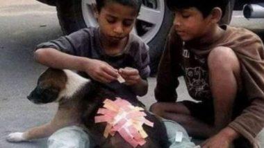 मानवता की मिसाल! कुत्ते को लगी चोट तो सड़क पर खेल रहे बच्चों ने ऐसे की उसकी मदद, Viral Pic जीत लेगा आपका दिल