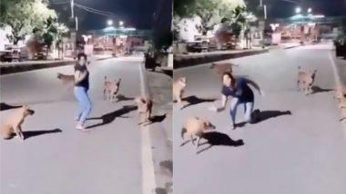 Viral Video: सड़क पर कुत्तों के साथ जब डांस करने लगी लड़की, बार-बार देखा जा रहा है यह मजेदार वायरल वीडियो