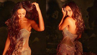 सोने सी चमकती हुई Malaika Arora का अंदाज