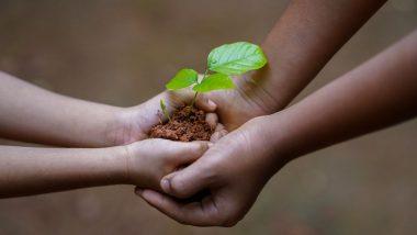 Harela 2021: उत्तराखंड का लोक उत्सव है हरेला, भगवान शिव और माता पार्वती को समर्पित इस पर्व में पौधे लगाने की है परंपरा